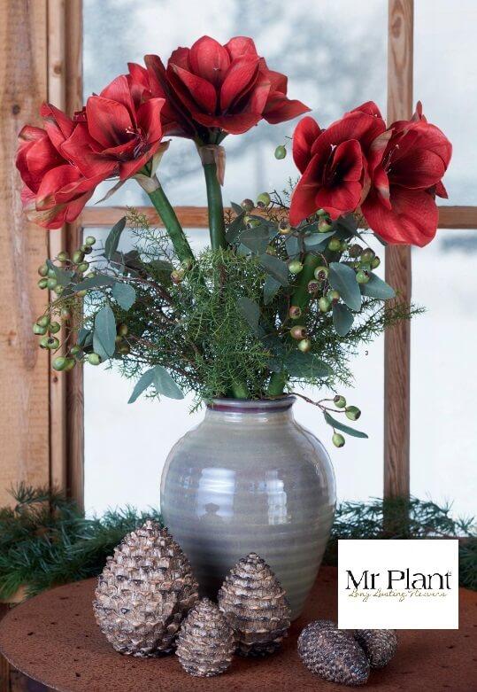 Bouquet d'Amaryllis dans un vase